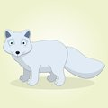 Arctic fox vector illustration of cartoon Stock Photography