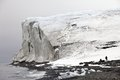 Arctic glacier franz josef land Royalty Free Stock Photos