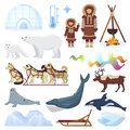 Arctic vector northern borealis norway and husky dog sledding sledge to yurta in snowy winter illustration polaris set