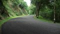 Ardennes road at summer time middle of a in the luxembourg in shady ambiance Stock Image