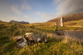Ardvreck castle sutherland scotland on the shores of loch assynt highlands of is a ruined tower house built in by the macleod clan Royalty Free Stock Photo
