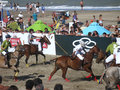 Argentina beach polo 5.1 Royalty Free Stock Images