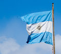 Argentina flag, flying Royalty Free Stock Images