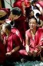 Argumentation des moines Photographie stock libre de droits