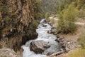 Argun River (Caucasus), Georgia Royalty Free Stock Photo