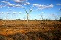 Arid Australian Outback Royalty Free Stock Photo