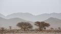 Arid and hot day in the desert of Sahara, Tata Royalty Free Stock Photo