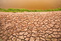 Arid land with green plant Royalty Free Stock Images
