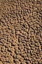 Arid Soil Stock Image