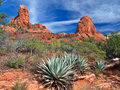 Arizona Royalty Free Stock Images