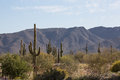 Arizona Desert Scenery Stock Images