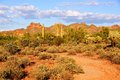 Arizona desert view of the near phoenix at sunset Royalty Free Stock Photography