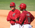Arizona Diamondbacks Kelly Johnson & Justin Upton Stock Images