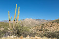 Arizona's Santa Catalina Mountains Royalty Free Stock Photo