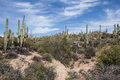 Arizona Scenery Royalty Free Stock Photography