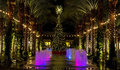 Arizona shopping mall christmas tree and lighted palm trees line a pool colored fountains with a decorated Stock Image