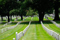 Arlington cemetery gravestones in national in washington d c Royalty Free Stock Photography