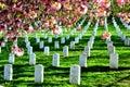 Arlington National Cemetery Royalty Free Stock Photo