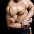 Arm and torso of muscular male bodybuilder flexing biceps detail ripped bicep pecs on black background Royalty Free Stock Image