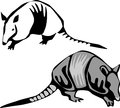 Armadillo greyscale illustration of nine banded Stock Photography