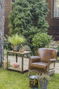 armchair on the lawn Royalty Free Stock Photo