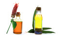 Aroma oils Stock Photography