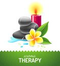 Aroma therapy icon with oil cinnamon and anise star Royalty Free Stock Photos