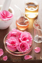 Aromatherapy and alchemy with pink flowers Stock Photography