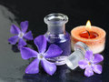 Aromatherapy - black, violet and red brown Stock Images