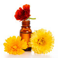 Aromatherapy essential oil with marigold Stock Photos
