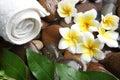 Aromatherapy spa care oil health Stock Image