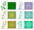 Aromatic herbs banners set of six with plants silhouettes stickers for web or packaging design vector file is eps all elements are Stock Photography