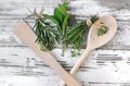 Aromatic herbs in bouquet on white wooden with spoon Royalty Free Stock Image
