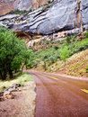 Around the Bend at Zion Stock Photography