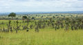 Around murchison falls national park panoramic scenery the in uganda africa Stock Photos