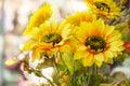 Arranged artificial sun flower bouquet Royalty Free Stock Photo