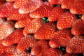 Arranged strawberries Royalty Free Stock Photos