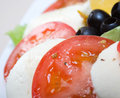 Arrangement of mozzarella and tomatoes. Stock Photography