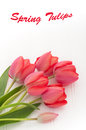 Arrangement red tulips white beadboard background copyspace above Stock Photography