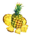 Arrangement with whole and slice pineapple.