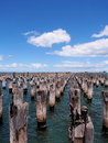 Array of old stumps in the Port Phillip bay sea water at the Princes pier Royalty Free Stock Photo