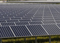 Array of solar panels Royalty Free Stock Photo