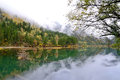 Arrow bamboo lake jiuzhaigou china reflection of in Stock Image
