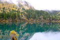 Arrow bamboo lake jiuzhaigou china reflection of in Royalty Free Stock Photo