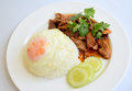 Arroz y cerdo con la salsa del ajo y de pimienta y el huevo frito Fotografía de archivo libre de regalías