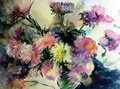 Watercolor art  background  colorful nature botanical fresh romantic  flowers asters bouquet