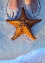 Art beautiful female legs and starfish on the beach sand Royalty Free Stock Photos