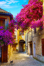 Art beautiful old town of provence Stock Images