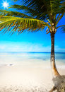 Art caribbean tropical sea beach Royalty Free Stock Photo