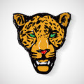 Art cartoon tiger head format Stock Images
